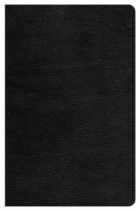 CSB Ultrathin Reference Bible Black Indexed (Red Letter Edition)