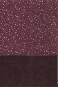 NRSV Thinline Reference Bible Burgundy Indexed