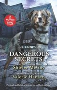 Dangerous Secrets: Secrets & Lies / Search and Rescue (2in1 Love Inspired Suspence Series)