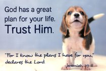 Poster Small: Trust Him, Cute Beagle Puppy, Jer 29:11